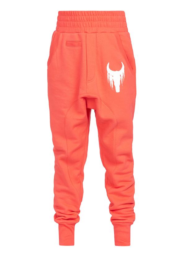 spodnie KIDS WHITE BULL